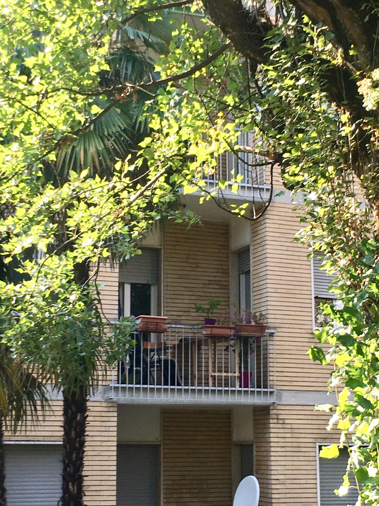 Trilocale in zona verde e residenziale – Rif. 385